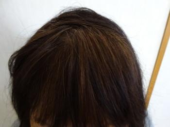 haircol_4.jpg
